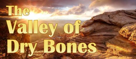 Dry Bones - Stacy Bonczyk