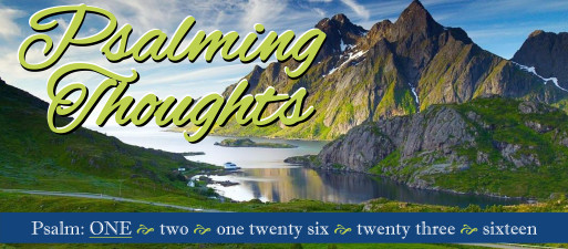 Psalming Thoughts, week 1