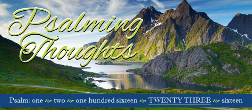 Psalming Thoughts, week 4