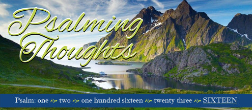 Psalming Thoughts, week 5